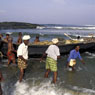 Paul Nevin Kerala Photo Fisherman Hawah beach
