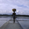 Paul Nevin Kerala Photo Salt production