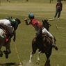 Despite being played at near 3,700 m'trs, polo at this level is played at an unbelievably astonishing pace for both man and beast.